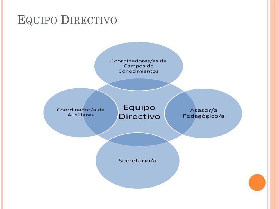 COMPETENCIAS ESPECÍFICAS: (CONOCIMIENTOS, ACTITUDES, HABILIDADES, VALORES, CAPACIDADES QUE SE MOVILIZAN EN EL DESEMPEÑO DE LAS FUNCIONES) Capacidad para participar activamente, mediante aportes y orientaciones en el desarrollo del Proyecto educativo Institucional.
