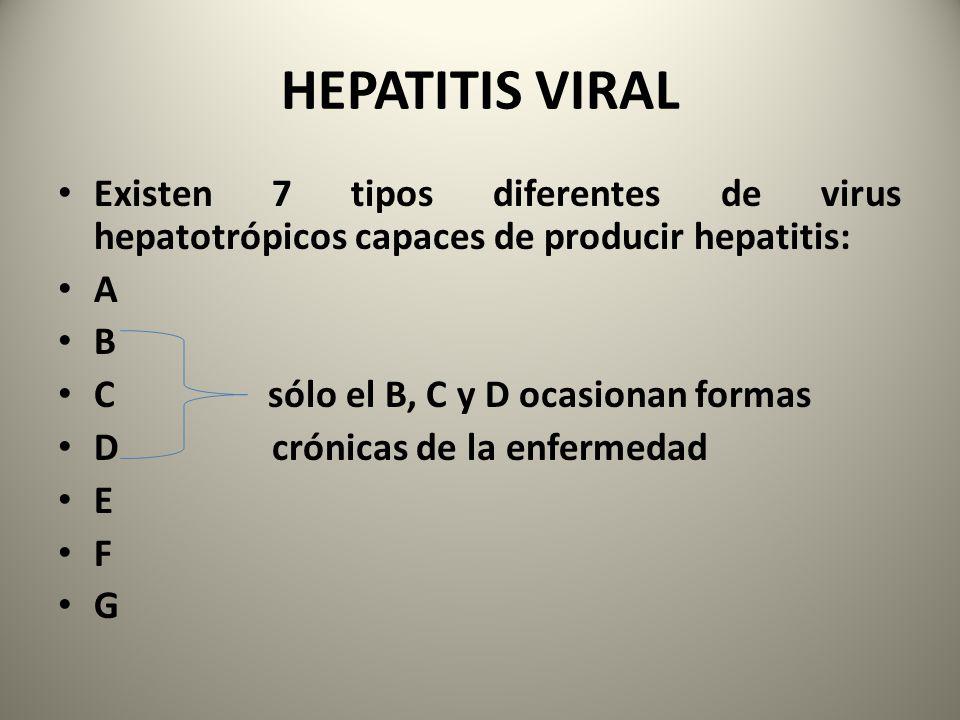 HEPATITIS VIRAL Existen 7 tipos diferentes de virus hepatotrópicos capaces de producir hepatitis: A B C sólo el B, C y D ocasionan formas D crónicas d