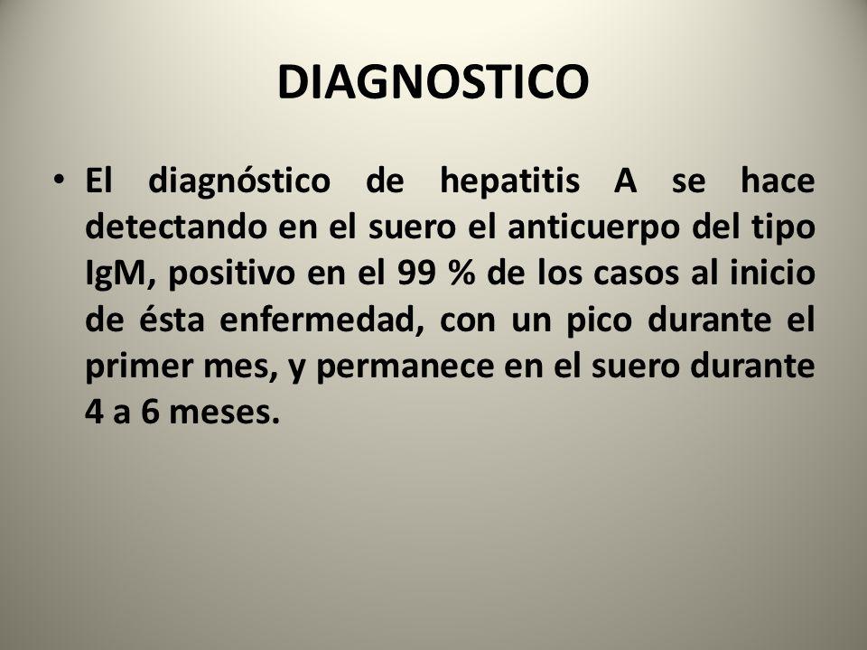 DIAGNOSTICO El diagnóstico de hepatitis A se hace detectando en el suero el anticuerpo del tipo IgM, positivo en el 99 % de los casos al inicio de ést
