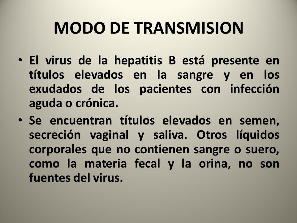 MODO DE TRANSMISION El virus de la hepatitis B está presente en títulos elevados en la sangre y en los exudados de los pacientes con infección aguda o