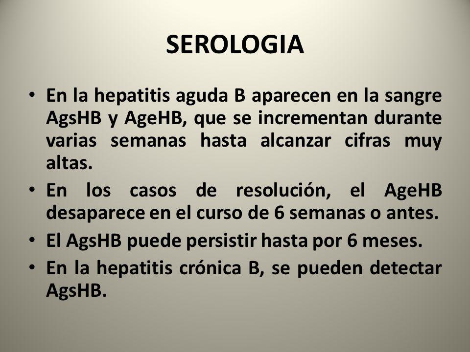 SEROLOGIA En la hepatitis aguda B aparecen en la sangre AgsHB y AgeHB, que se incrementan durante varias semanas hasta alcanzar cifras muy altas. En l