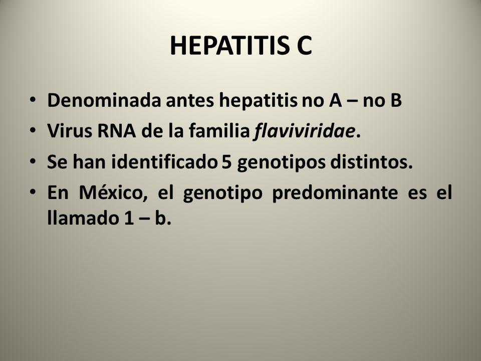 Denominada antes hepatitis no A – no B Virus RNA de la familia flaviviridae. Se han identificado 5 genotipos distintos. En México, el genotipo predomi