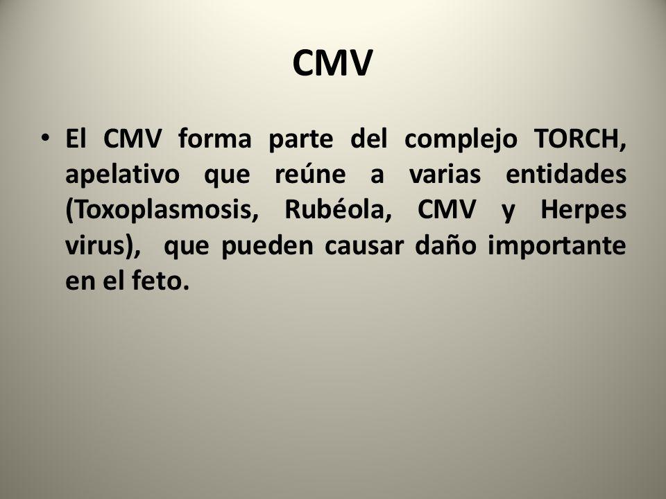 CMV El CMV forma parte del complejo TORCH, apelativo que reúne a varias entidades (Toxoplasmosis, Rubéola, CMV y Herpes virus), que pueden causar daño