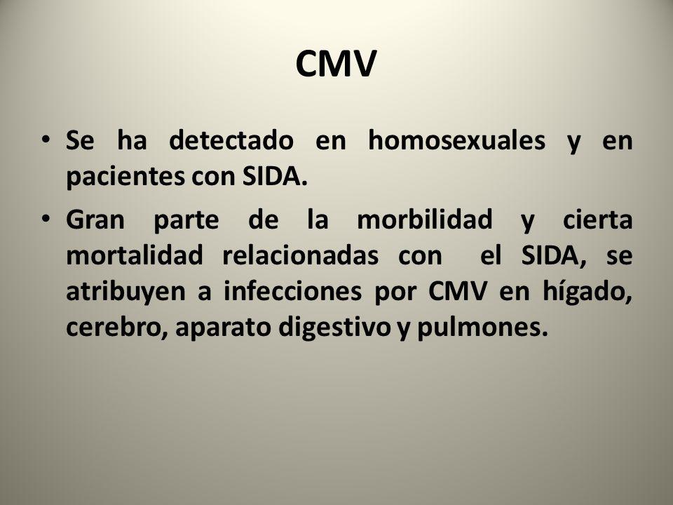 CMV Se ha detectado en homosexuales y en pacientes con SIDA. Gran parte de la morbilidad y cierta mortalidad relacionadas con el SIDA, se atribuyen a
