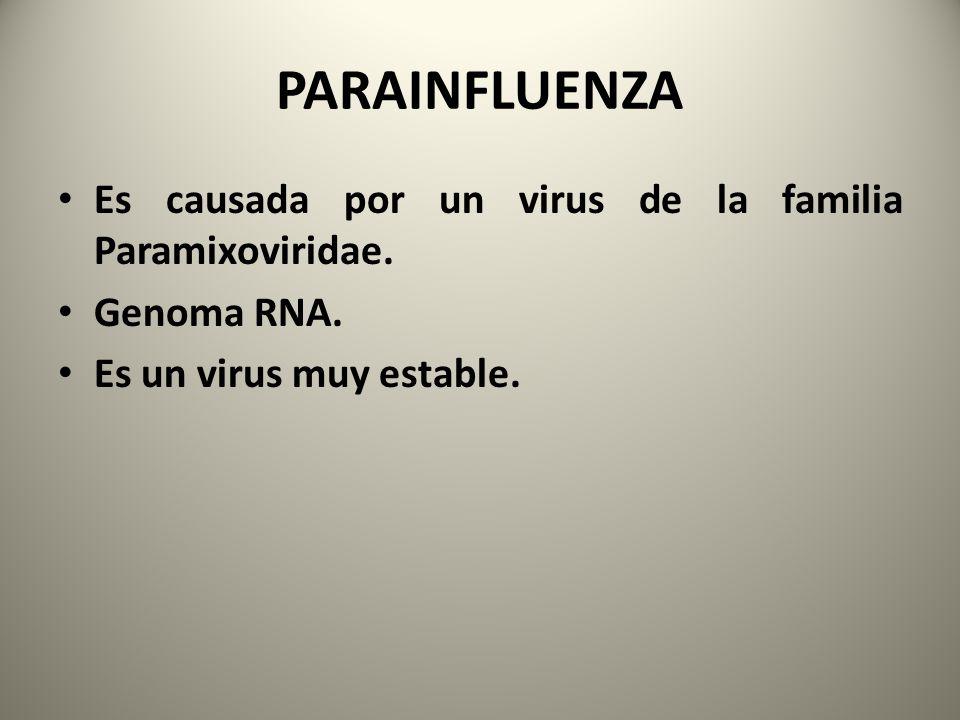 Es causada por un virus de la familia Paramixoviridae. Genoma RNA. Es un virus muy estable.