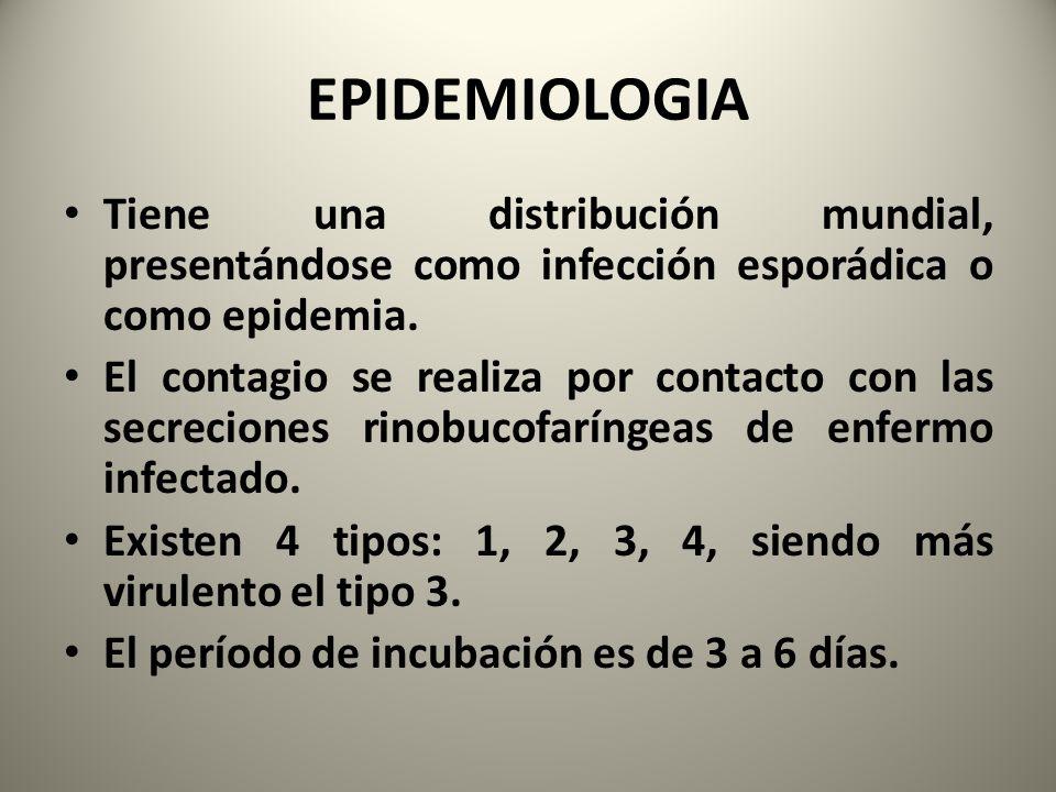 EPIDEMIOLOGIA Tiene una distribución mundial, presentándose como infección esporádica o como epidemia. El contagio se realiza por contacto con las sec