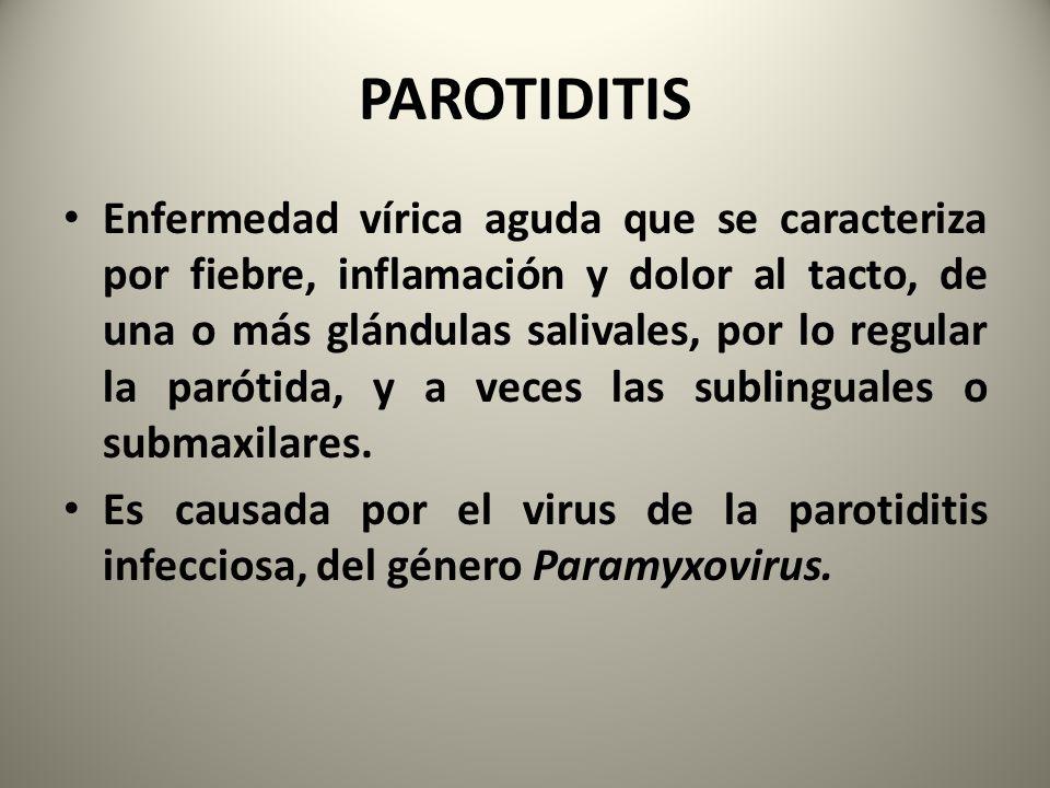 Enfermedad vírica aguda que se caracteriza por fiebre, inflamación y dolor al tacto, de una o más glándulas salivales, por lo regular la parótida, y a