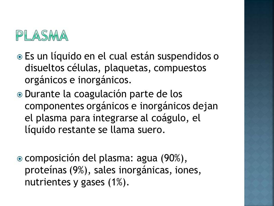 AGUA (3,5 L) ELEMENTOS INORGÁNICOS ELECTROLITOS MINERALES Proteínas plasmáticas (7 g/100ml) Lípidos ELEMENTOS ORGANICOSCarbohidratos Hormonas Aminoácidos Gases Productos del metabolismo