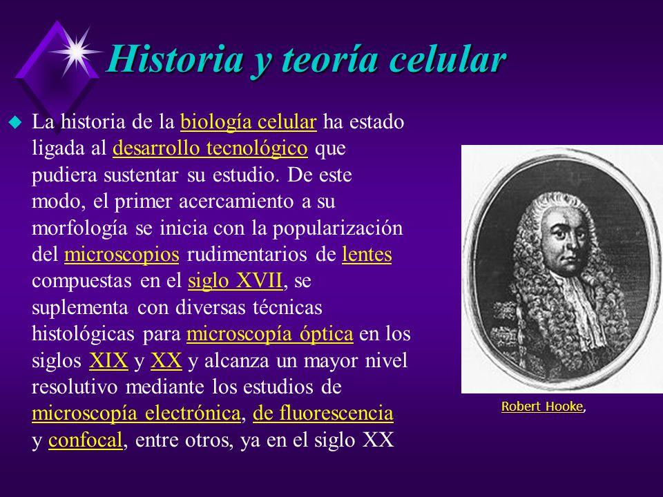 Historia y teoría celular u La historia de la biología celular ha estado ligada al desarrollo tecnológico que pudiera sustentar su estudio.