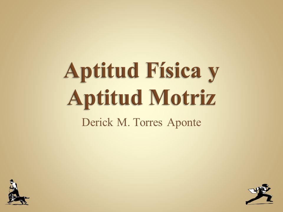Derick M. Torres Aponte