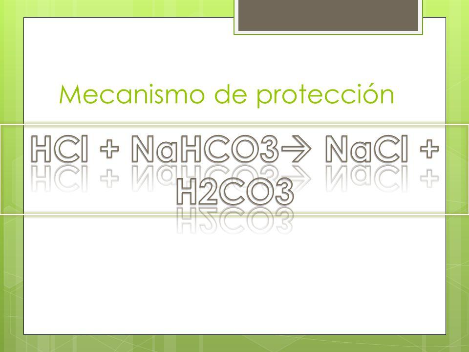 Mecanismo de protección