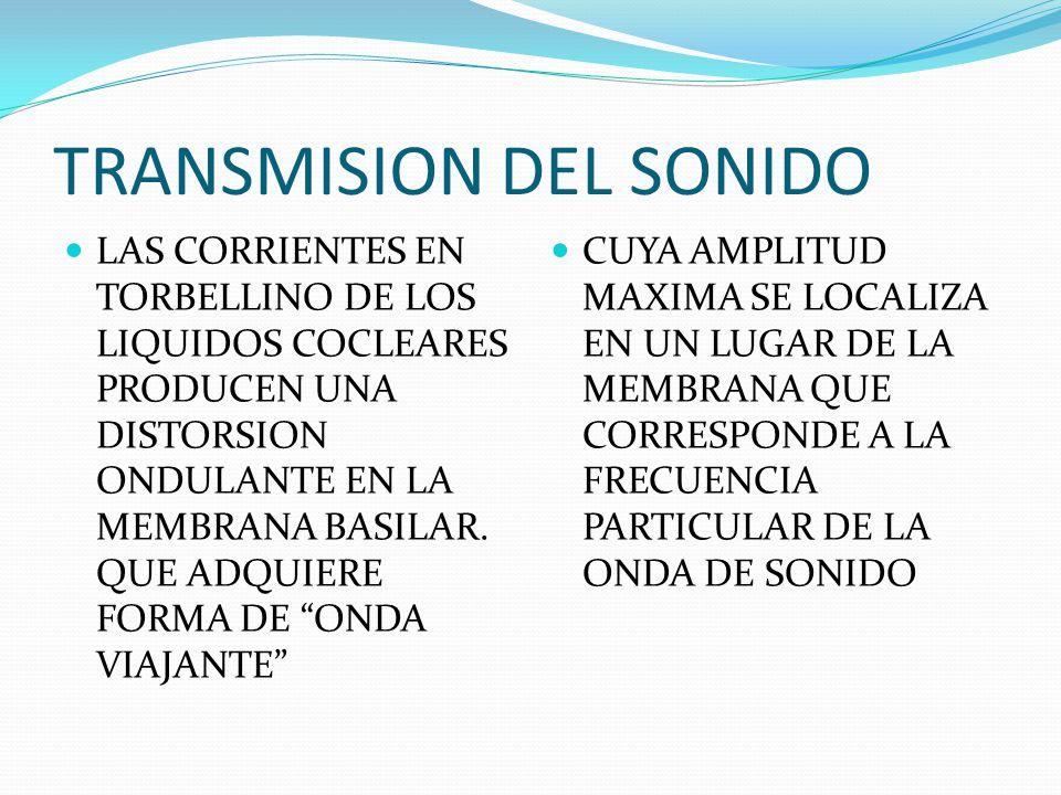 TRANSMISION DEL SONIDO LAS CORRIENTES EN TORBELLINO DE LOS LIQUIDOS COCLEARES PRODUCEN UNA DISTORSION ONDULANTE EN LA MEMBRANA BASILAR. QUE ADQUIERE F