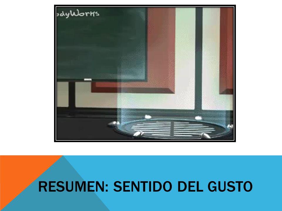 RESUMEN: SENTIDO DEL GUSTO