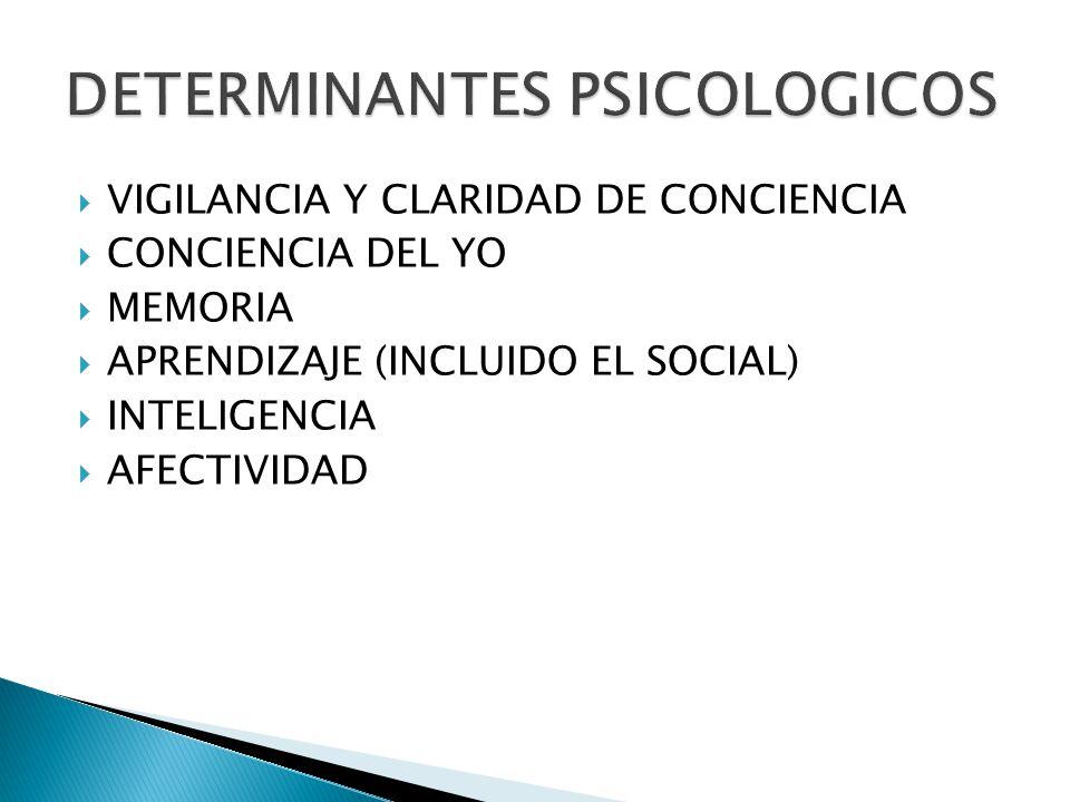 VIGILANCIA Y CLARIDAD DE CONCIENCIA CONCIENCIA DEL YO MEMORIA APRENDIZAJE (INCLUIDO EL SOCIAL) INTELIGENCIA AFECTIVIDAD