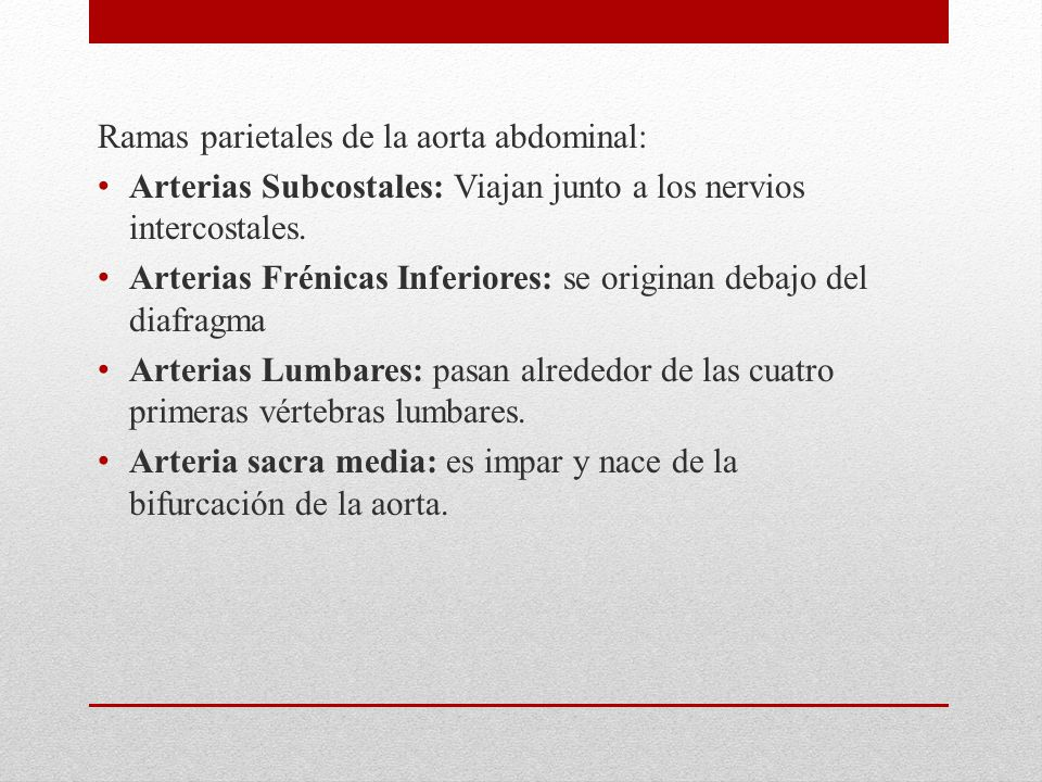 Ramas parietales de la aorta abdominal: Arterias Subcostales: Viajan junto a los nervios intercostales. Arterias Frénicas Inferiores: se originan deba