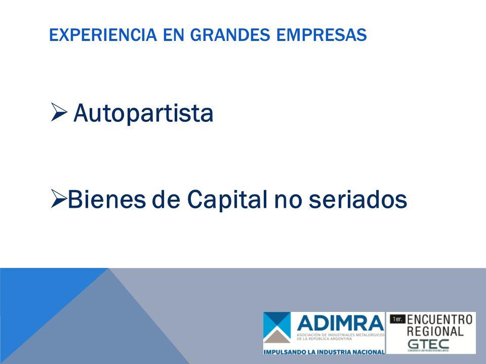 EXPERIENCIA EN GRANDES EMPRESAS Autopartista Bienes de Capital no seriados
