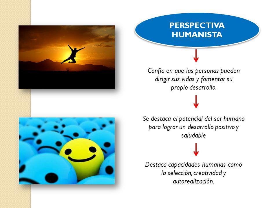 PERSPECTIVA HUMANISTA Confía en que las personas pueden dirigir sus vidas y fomentar su propio desarrollo. Se destaca el potencial del ser humano para