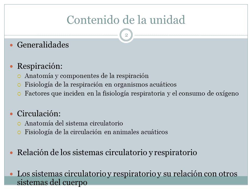 3 Generalidades