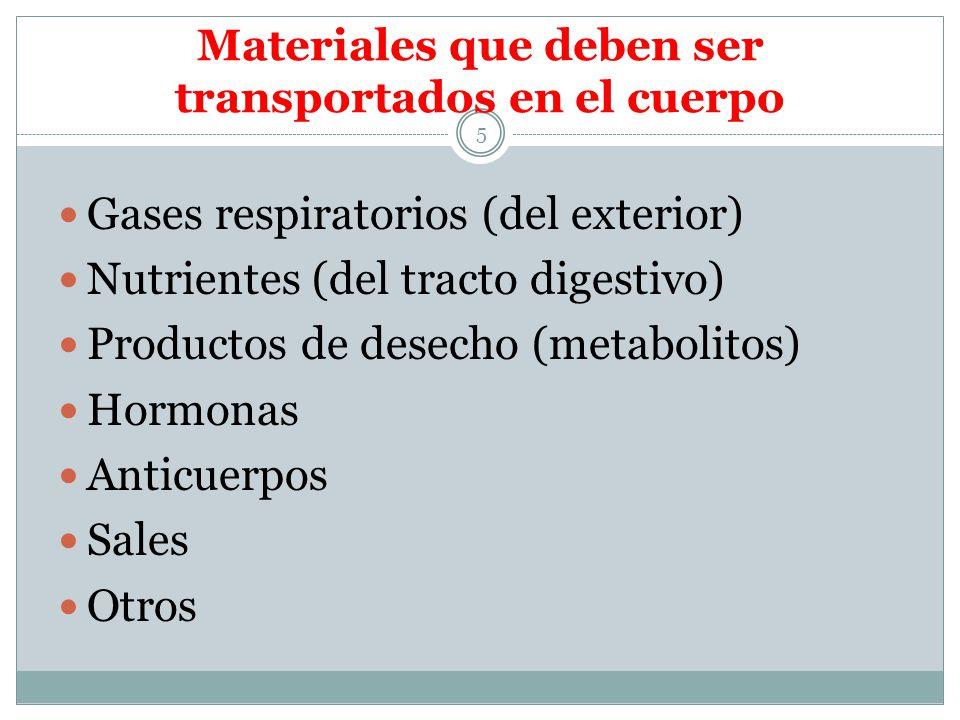 Adaptaciones del Tracto Digestivo para la Respiración 16 También llamada respiración intestinal 1.