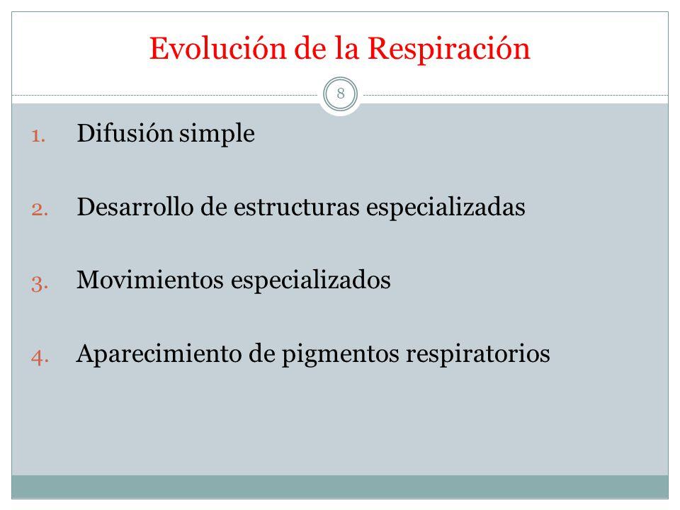 Tipos de Sistemas Respiratorios en Animales Acuáticos 9 1.