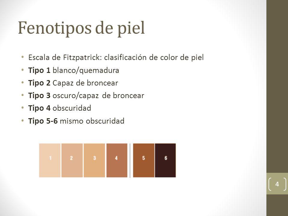 Fenotipos de piel Escala de Fitzpatrick: clasificación de color de piel Tipo 1 blanco/quemadura Tipo 2 Capaz de broncear Tipo 3 oscuro/capaz de bronce