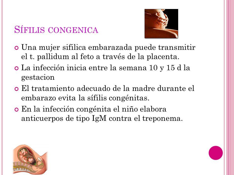 S ÍFILIS CONGENICA Una mujer sifilica embarazada puede transmitir el t. pallidum al feto a través de la placenta. La infección inicia entre la semana