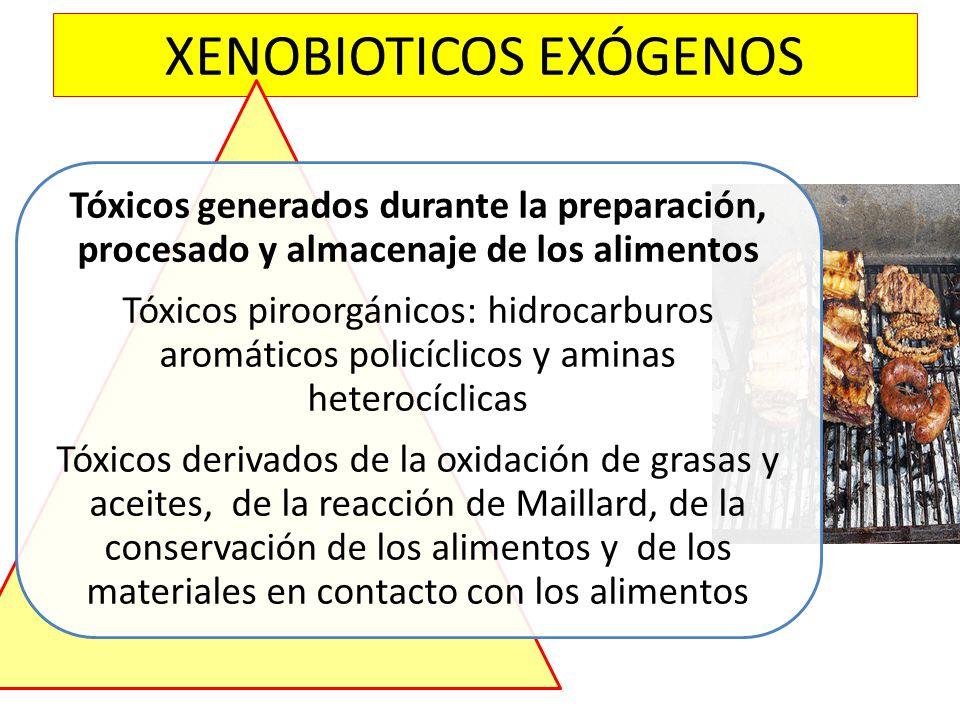 XENOBIOTICOS EXÓGENOS Tóxicos generados durante la preparación, procesado y almacenaje de los alimentos Tóxicos piroorgánicos: hidrocarburos aromático