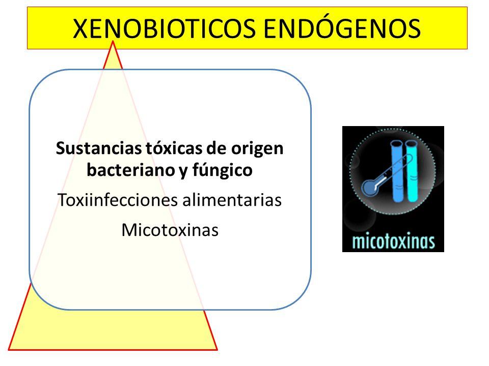 XENOBIOTICOS ENDÓGENOS Sustancias tóxicas de origen bacteriano y fúngico Toxiinfecciones alimentarias Micotoxinas