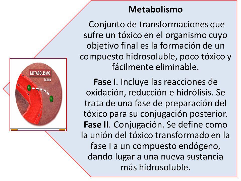 Metabolismo Conjunto de transformaciones que sufre un tóxico en el organismo cuyo objetivo final es la formación de un compuesto hidrosoluble, poco tó
