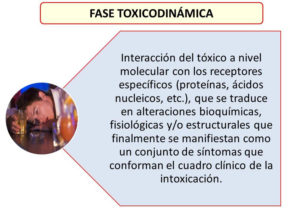 Interacción del tóxico a nivel molecular con los receptores específicos (proteínas, ácidos nucleicos, etc.), que se traduce en alteraciones bioquímica