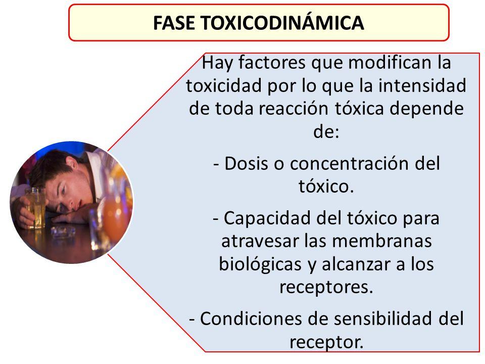 Hay factores que modifican la toxicidad por lo que la intensidad de toda reacción tóxica depende de: - Dosis o concentración del tóxico. - Capacidad d