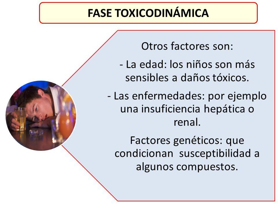 Otros factores son: - La edad: los niños son más sensibles a daños tóxicos. - Las enfermedades: por ejemplo una insuficiencia hepática o renal. Factor