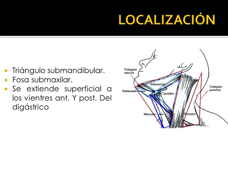 Triángulo submandibular. Fosa submaxilar. Se extiende superficial a los vientres ant. Y post. Del digástrico