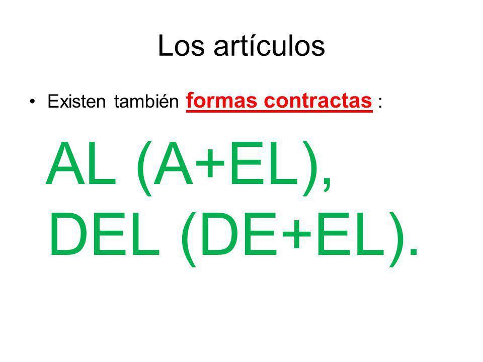 Los artículos Existen también formas contractas : AL (A+EL), DEL (DE+EL).