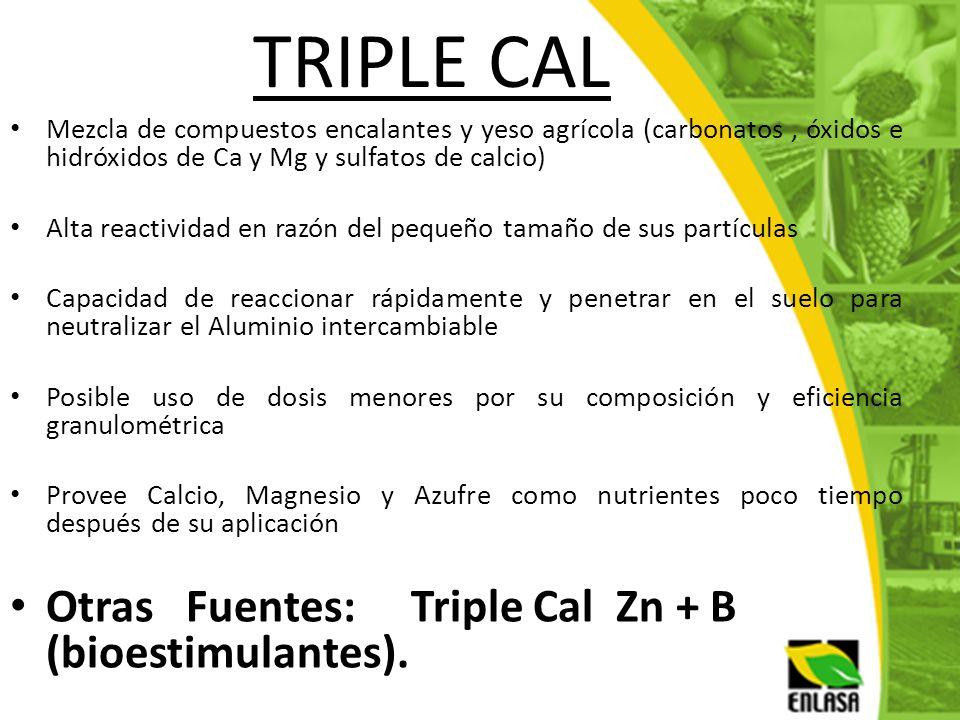 TRIPLE CAL Mezcla de compuestos encalantes y yeso agrícola (carbonatos, óxidos e hidróxidos de Ca y Mg y sulfatos de calcio) Alta reactividad en razón