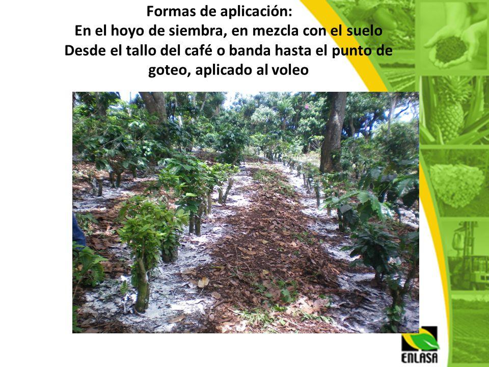 Formas de aplicación: En el hoyo de siembra, en mezcla con el suelo Desde el tallo del café o banda hasta el punto de goteo, aplicado al voleo