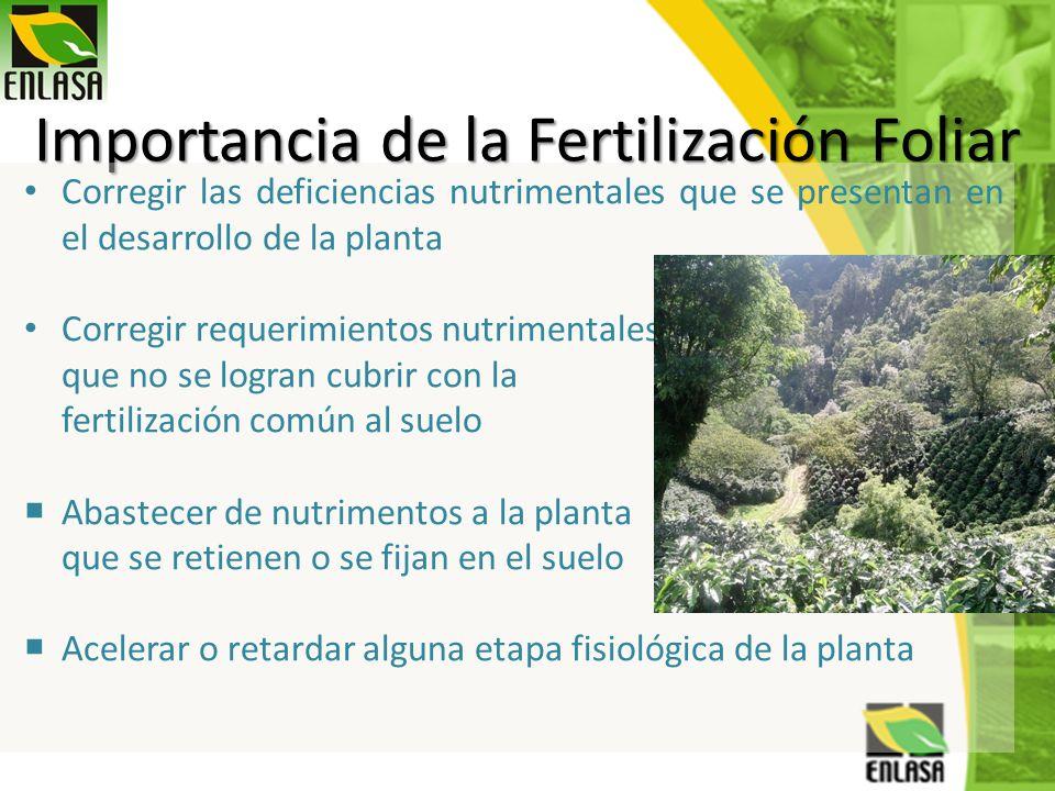 Importancia de la Fertilización Foliar Corregir las deficiencias nutrimentales que se presentan en el desarrollo de la planta Corregir requerimientos