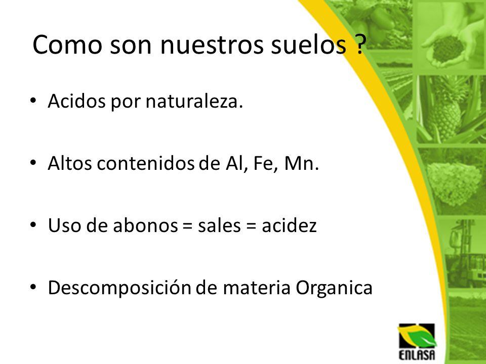 Como son nuestros suelos ? Acidos por naturaleza. Altos contenidos de Al, Fe, Mn. Uso de abonos = sales = acidez Descomposición de materia Organica