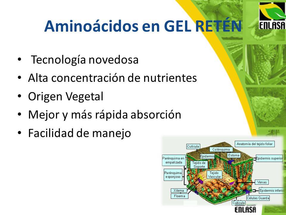 Aminoácidos en GEL RETÉN Tecnología novedosa Alta concentración de nutrientes Origen Vegetal Mejor y más rápida absorción Facilidad de manejo