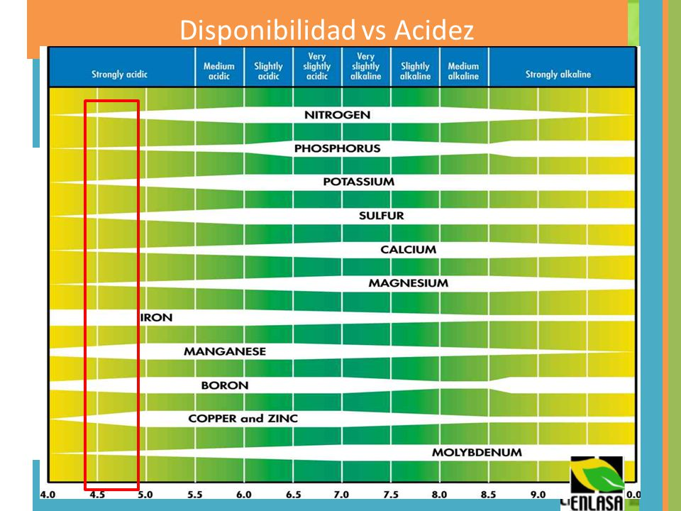Disponibilidad vs Acidez