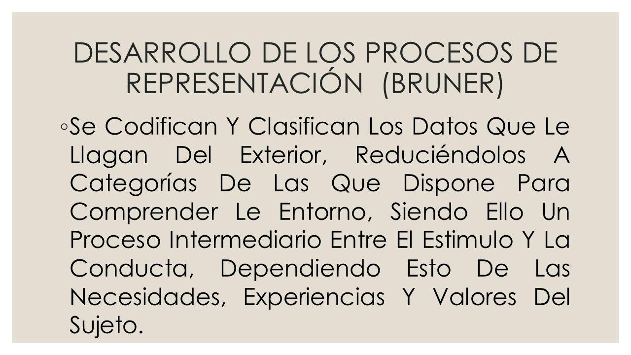 DESARROLLO DE LOS PROCESOS DE REPRESENTACIÓN (BRUNER) Se Codifican Y Clasifican Los Datos Que Le Llagan Del Exterior, Reduciéndolos A Categorías De La
