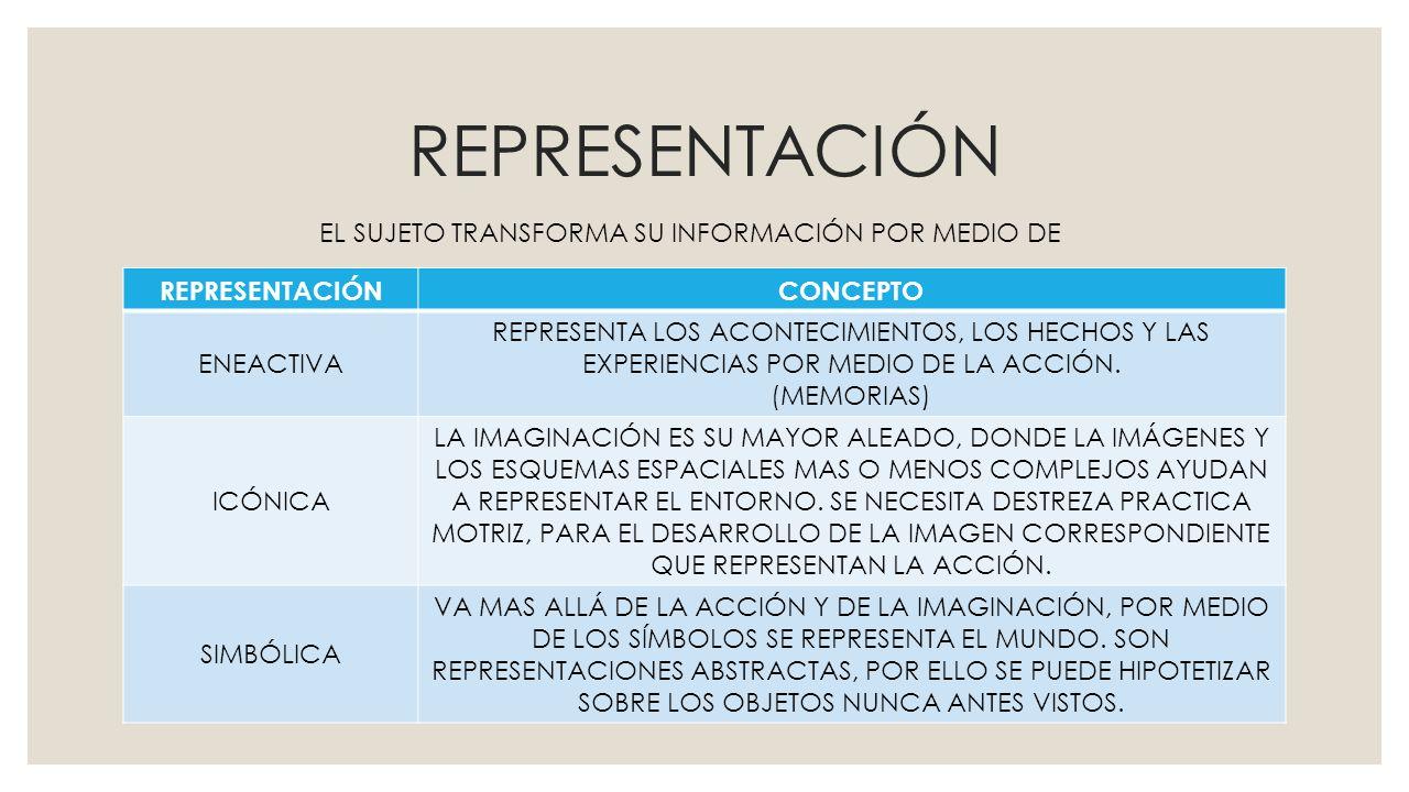 REPRESENTACIÓN CONCEPTO ENEACTIVA REPRESENTA LOS ACONTECIMIENTOS, LOS HECHOS Y LAS EXPERIENCIAS POR MEDIO DE LA ACCIÓN. (MEMORIAS) ICÓNICA LA IMAGINAC