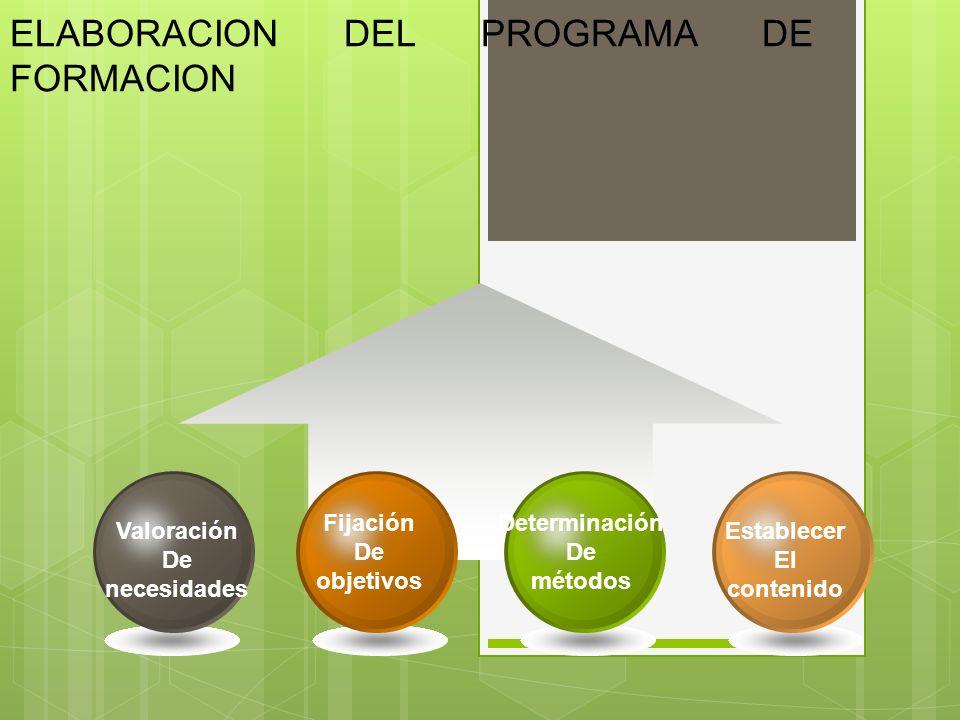 ELABORACION DEL PROGRAMA DE FORMACION Establecer El contenido Determinación De métodos Fijación De objetivos Valoración De necesidades