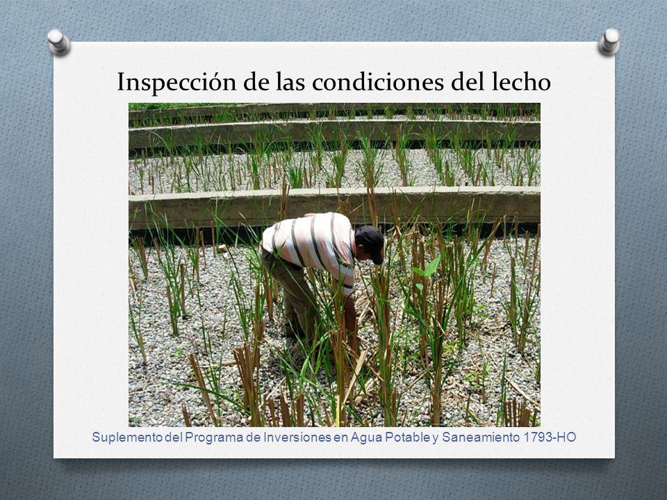 Inspección de las condiciones del lecho Suplemento del Programa de Inversiones en Agua Potable y Saneamiento 1793-HO