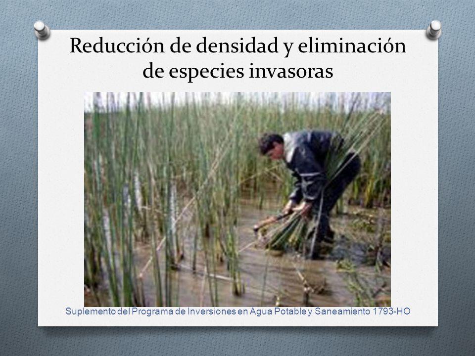 Reducción de densidad y eliminación de especies invasoras Suplemento del Programa de Inversiones en Agua Potable y Saneamiento 1793-HO
