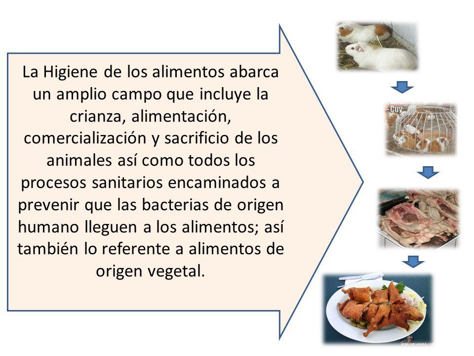 La Higiene de los alimentos abarca un amplio campo que incluye la crianza, alimentación, comercialización y sacrificio de los animales así como todos