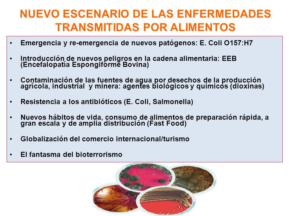NUEVO ESCENARIO DE LAS ENFERMEDADES TRANSMITIDAS POR ALIMENTOS Emergencia y re-emergencia de nuevos patógenos: E. Coli O157:H7 Introducción de nuevos
