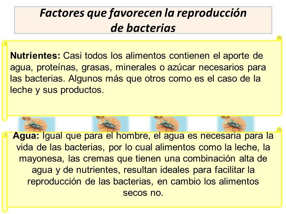 Factores que favorecen la reproducción de bacterias Nutrientes: Casi todos los alimentos contienen el aporte de agua, proteínas, grasas, minerales o a