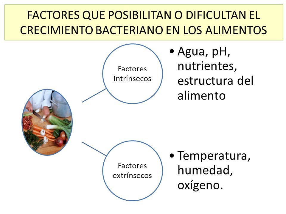 FACTORES QUE POSIBILITAN O DIFICULTAN EL CRECIMIENTO BACTERIANO EN LOS ALIMENTOS Factores intrínsecos Agua, pH, nutrientes, estructura del alimento Fa