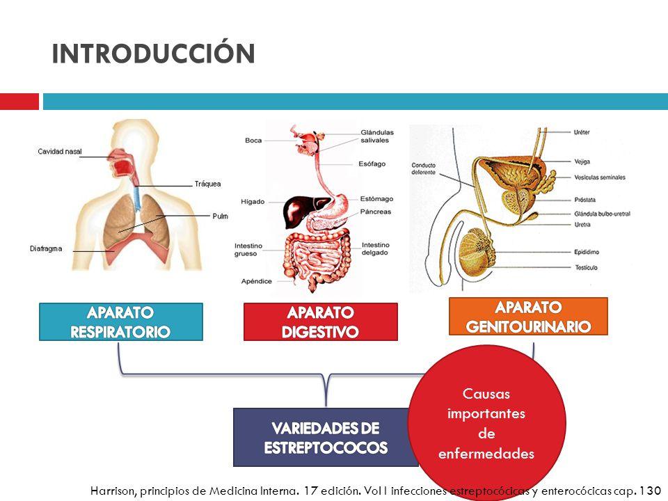 Causas importantes de enfermedades Harrison, principios de Medicina Interna. 17 edición. Vol I infecciones estreptocócicas y enterocócicas cap. 130
